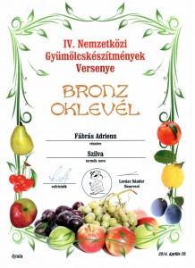 2014, Szilva, Bronz